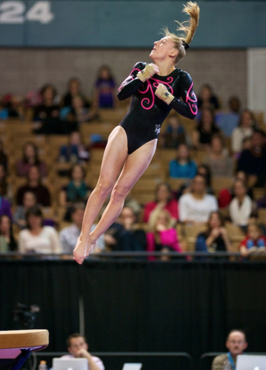level 5 gymnastics state meet illinois 2014